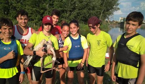 Imatge dels joves piragüistes del Sícoris amb la cigonya que van rescatar.