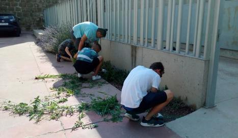 Quatre voluntaris del projecte Jova a Castelló de Farfanya.