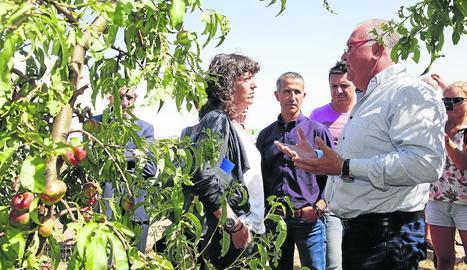 La consellera escolta les explicacions del president de Fruits de Ponent davant l'alcalde d'Alcarràs.