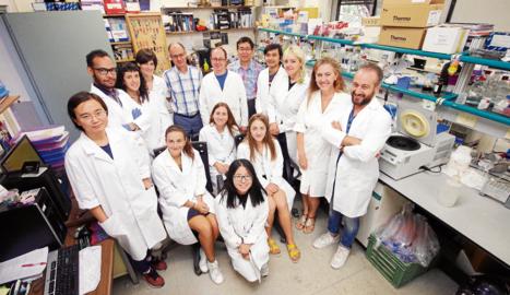 Imatge d'arxiu del grup de Biotecnologia Vegetal d'Agrònoms de la UdL.
