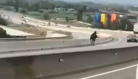 Un cavall provoca un accident amb tres ferits lleus en la C-17 en Tona