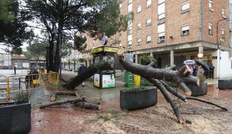 Efectes d'una tempesta a Lleida la passada primavera.