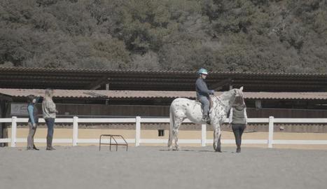 Classes d'equinoteràpia a l'hípica Equus Aventura.