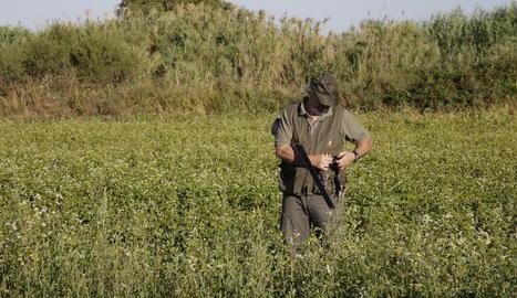 Un caçador aquesta setmana a a l'inici de la mitja veda a Lleida.