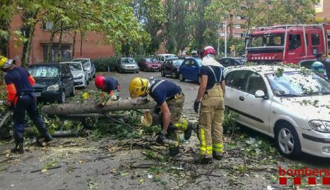 Imatge dels bombers manipulant una branca caiguda sobre uns vehicles a Sabadell.