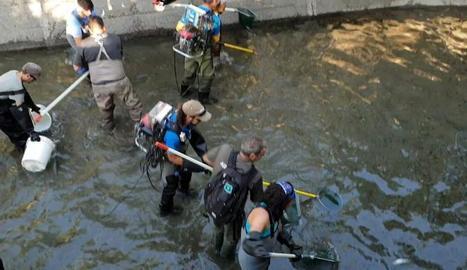 Operaris durant el rescat al canal de Sossís.