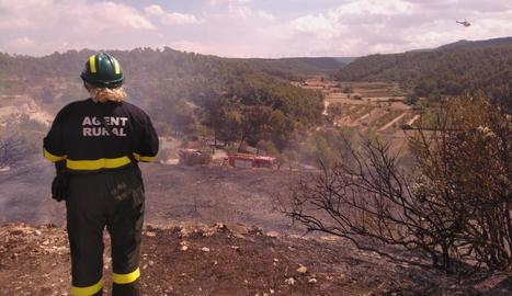 Una agent rural treballant en l'incendi de l'Espluga Calba. A la dreta, l'extensió calcinada a Torregrossa.