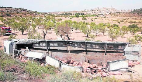 Imatge del camió bolcat després de caure per un terraplè a Maldà.