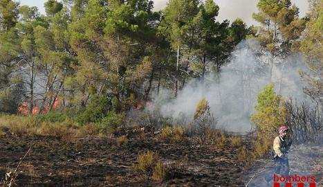 Tasques d'extinció ahir a l'incendi de l'Espluga Calba.