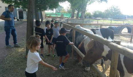 Els nens van disfrutar atansant-se als animals, sobretot als cavalls.