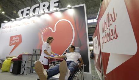 Una persona donant sang a l'estand de SEGRE de la Fira.