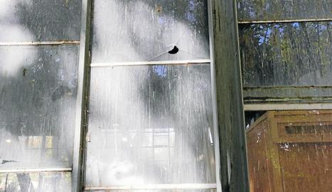 Aquesta imatge mostra la brutícia acumulada i el mal estat dels vidres del Palau de Vidre.