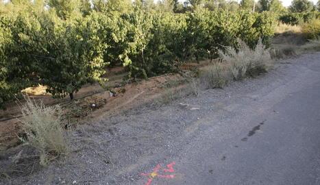 El tractor va sortir en aquest punt del camí i va acabar bolcant en un camp de fruiters.