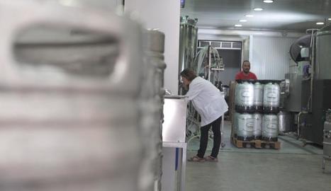 La fàbrica de cervesa Lo Vilot d'Almacelles produeix el seu llúpol.