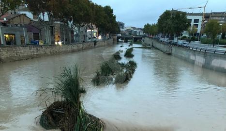 El riu Ondara al seu pas per Tàrrega aquest dilluns al matí.