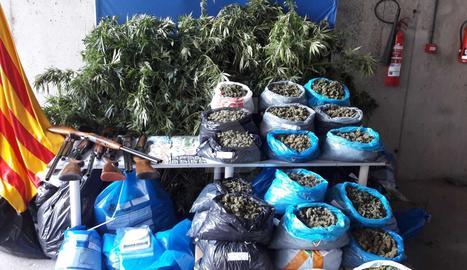 La marihuana i els objectes comissats en l'operació.