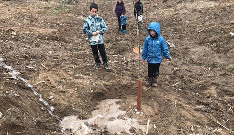 Nens i nenes van plantar arbres a l'aiguabarreig Segre-Cinca.