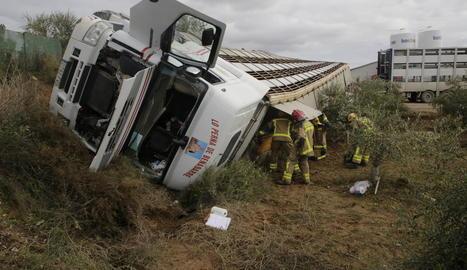 Més d'un centenar d'animals morts - Com conseqüència de l'impacte en un dels encreuaments de l'N-240, van morir la meitat dels 210 porcs que viatgen al camió. Una grua de l'empresa transportista es va encarregar durant part del matí  ...