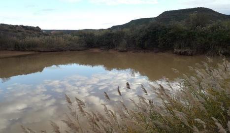 Imatge de la terbolesa de l'aigua de Castelldans.