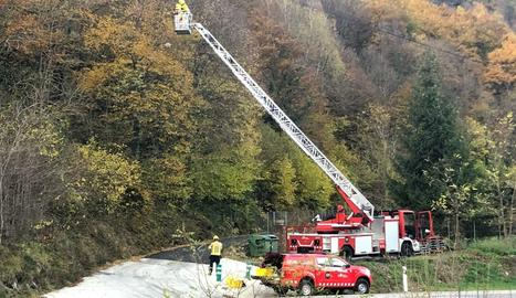 Els Pompièrs retirant el niu de vespa asiàtica a Les.