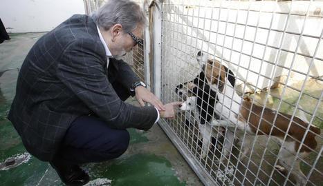 L'alcalde de Lleida, Fèlix Larrosa, durant la seua visita d'ahir.