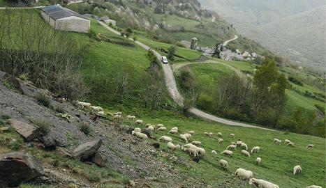 Arres, a la Val d'Aran, és on es declaren els ingressos més alts de Lleida per l'IRPF.