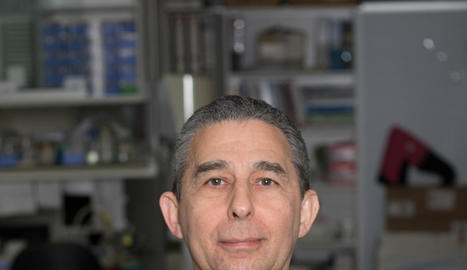 El professor Pere Godoy.