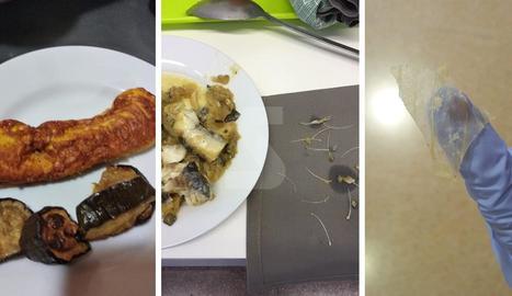 """El sindicat compta amb fotos com aquestes de peix ple d'espines, una truita més que dura i un plàstic trobat en un plat. GSS afirma que són de """"fa temps""""."""