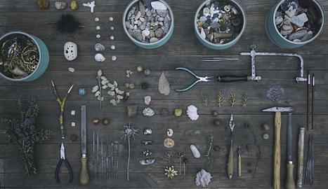 tendència mundial. Les boles de llavors es llencen arreu per reforestar parts del nostre planeta.