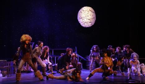 Moment de la representació de l'obra 'Gats', ahir al Teatre de l'Escorxador de Lleida.