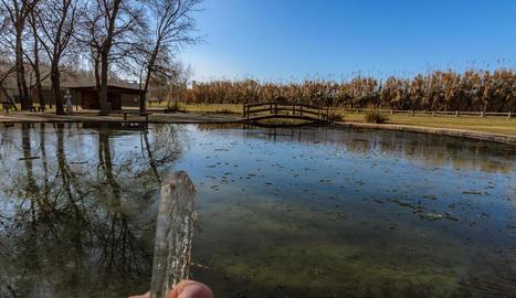 L'estany de la Mitjana estava ben gelat el passat dissabte, dia 12 de gener.