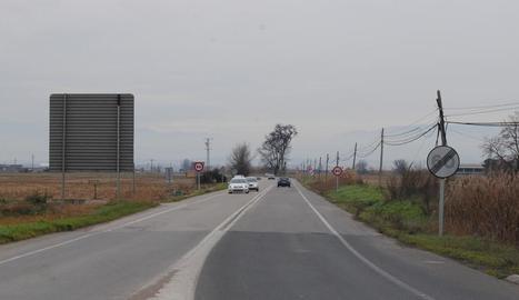 La carretera de Mollerussa a Linyola.