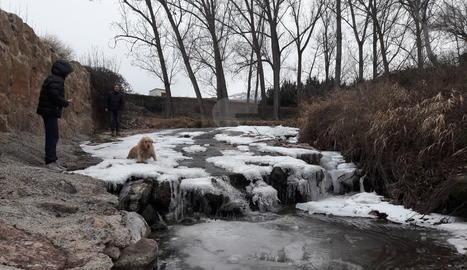 El riu de la Color, gelat, ahir a la Seu