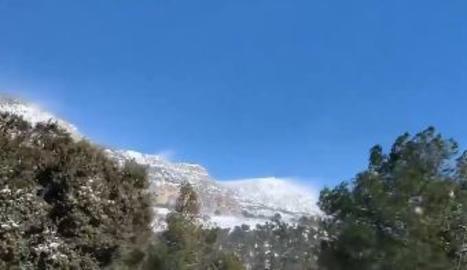 VÍDEOS. Imatges del torb al Pirineu