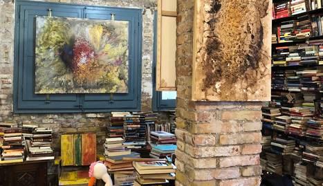 Com una pluja d'art sobre llibres