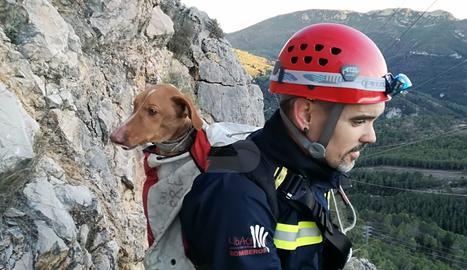 Rescaten un gos atrapat una nit a la presa de Canelles