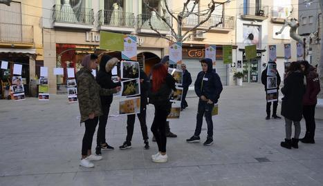 Exposició fotogràfica contra la violència a Mollerussa.