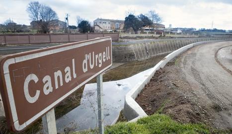 El Principal del Canal d'Urgell, ja recrescut al seu pas per Mafet.
