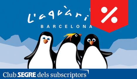 Visiteu l'Aquàrium de Barcelona i gaudiu de les activitats de cap de setmana relacionades amb el món dels pingüins.