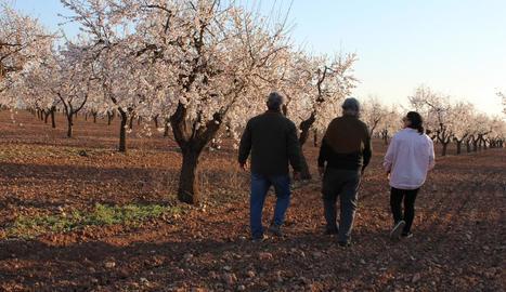 Imatge dels primers visitants de la temporada que van anar ahir a les Garrigues a veure els ametllers en flor que es troben entre la Floresta i Arbeca.