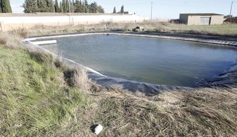 Imatge d'arxiu de la bassa de reg on va morir la víctima el gener del 2017.