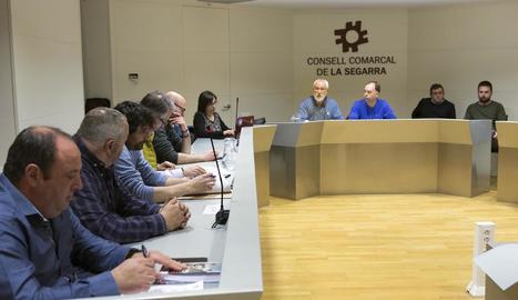 El ple del consell de la Segarra celebrat aquest dimecres.