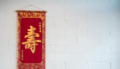 Passió per la Xina
