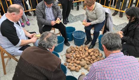 El concurs de pelar patates va atreure nombrós públic.