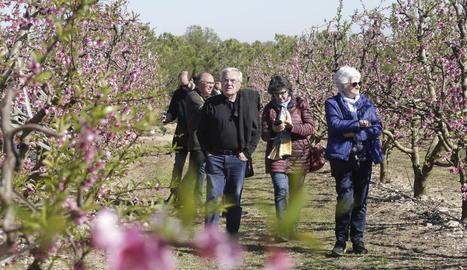 Visitants passejant per un camp florit a Alcarràs, i a la imatge de la dreta els turistes que van participar en les rutes que es van organitzar ahir al matí.