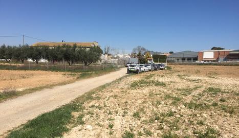 La policia entra en un magatzem en el marc de l'operació contra el tràfic de marihuana a Alcarràs.
