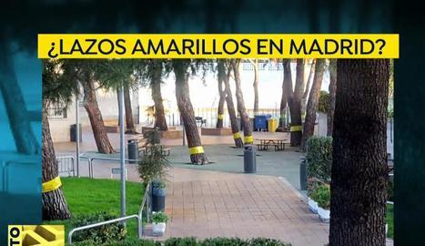 Retiren a Madrid llaços grocs que eren cintes contra les erugues