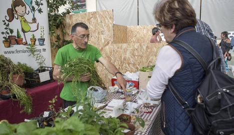 Castellserà celebra la segona fira d'horticultura els dies 13 i 14 d'abril.
