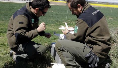 Agents Rurals muntant un dron.