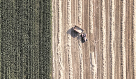 Homenatge a l'agricultura